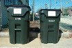 image of 95 gallon and 65 gallon trash carts