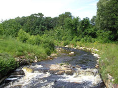 Black Brook