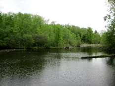 McQuesten Pond