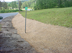 Good Example of Erosion Control
