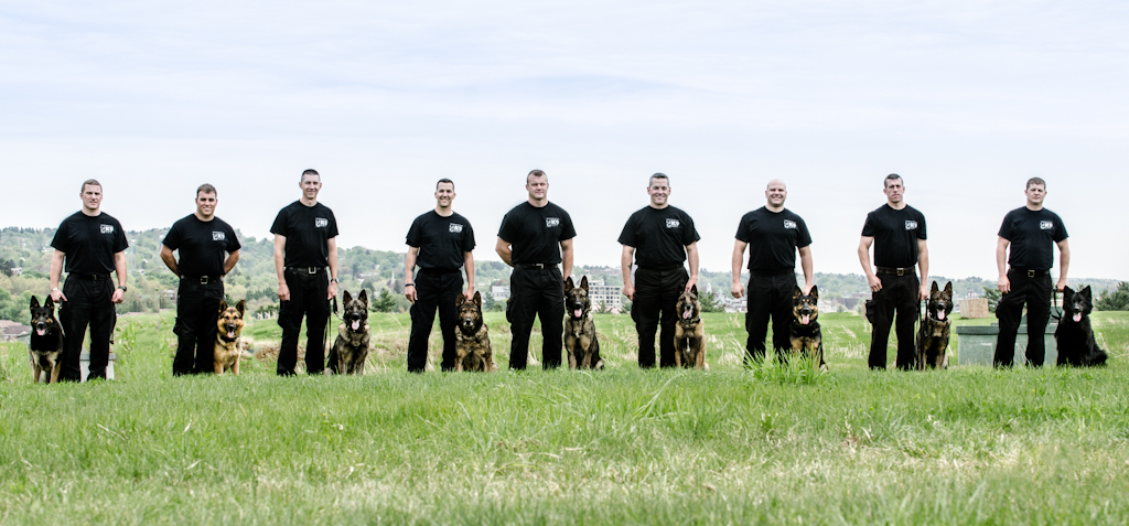 Canine Officers